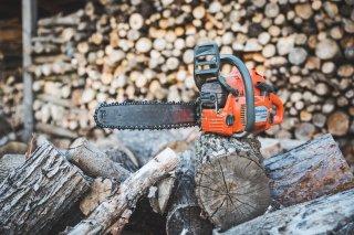 Kácení a řezy stromů