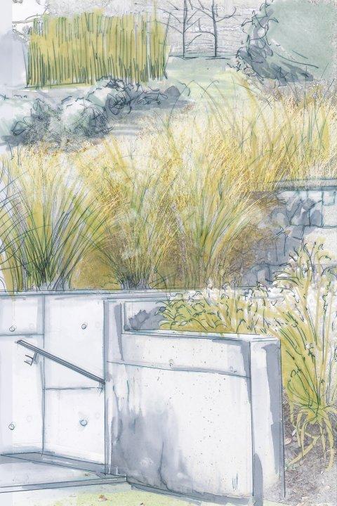 Moderní rodinná zahrada - fáze projektu