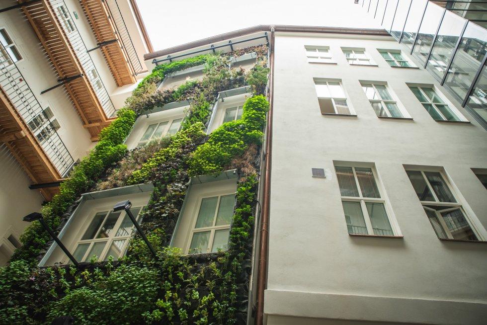 Vertikální zahrada v atriu