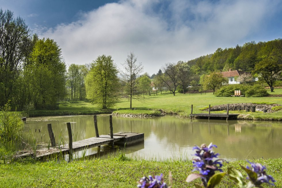 Zahrada s rybníkem